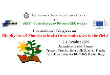 Roma, 2-4 ottobre: International Congress on Biophysics of Photosynthesis: from molecules to the field